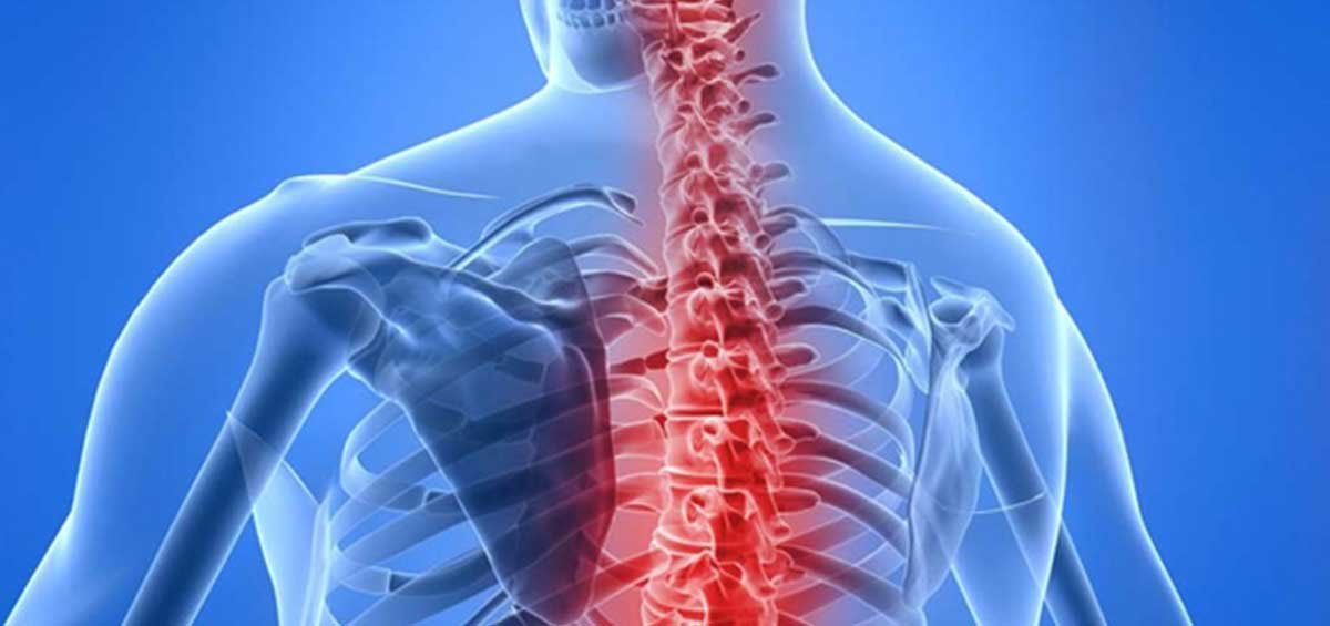 Why is a Chiropractor Pretoria so Important?